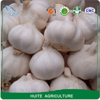 Chinese Cheap Price Normal Fresh White Garlic
