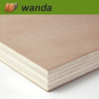 High Quality 19mm waterproof plywood