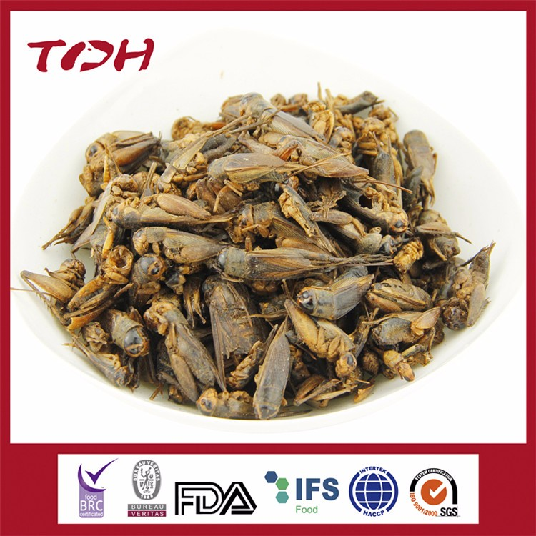 Dried Cricket/mealworm/grasshopper all natural pet food