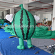 Inflatable Fruit watermelon model mascot costumes