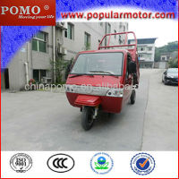 High Quality 2013 Best Closed Cabin Gasoline Motorized New Cheap Popular Cargo 250CC Motorcycle Price