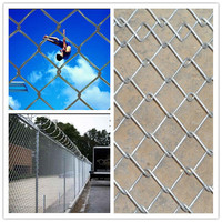 Iron Metal Type and Heat Treated Pressure Treated Wood Type Cheap Chain Link Fencing For Zoo