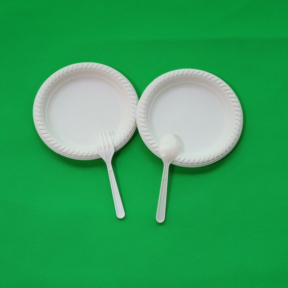 6 Inch Disposable Plates One Time Use Biodegradable Party Plates