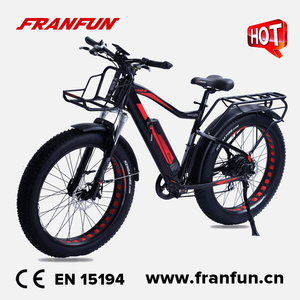 Wholesale electric fat bicycle 48v500w strong power 26 inch electric mountain bike