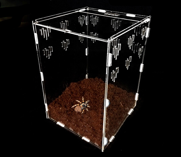 Hot selling acrylic animal cage for reptile display