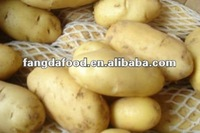 New crop farm fresh yellow potatoes(fresh russet potato)