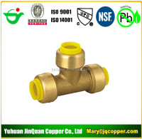 Manufacturing cUPC NSF of Lead Free Push Fit style of Plastic Pipe Fittings