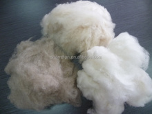 Sharrefun White/Ivory/Brown Pure Carded and Dehaired Cashmere Fiber 15.5-16.5mic 26-38mm