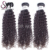 Unprocessed Burmese Virgin Human Weave 10a Burma Raw Curl Hair