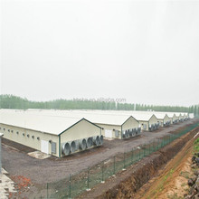 China Supplier Free Range Cheap Prefab Poultry House Chicken Broiler House Designs