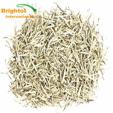 Pure natural White Tea Extract 50% Polyphenols
