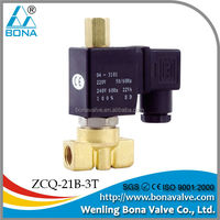 "1/8"" 1/4"" Brass automatic tea coffee vending machine Steam Hot Water Solenoid Valve 110V 220V ZCQ-21B-3T"