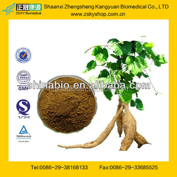 GMP Certified Manufacturer Supply Pueraria Mirifica Extract