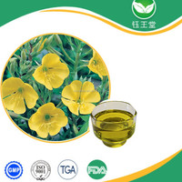 Best quality 100% Pure Natural resources Evening Primrose Oil With Low price,evening primrose oil