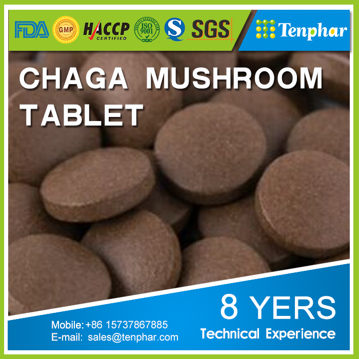GMP Certificated Beauty Products Chaga Mushroom Extract Tablet