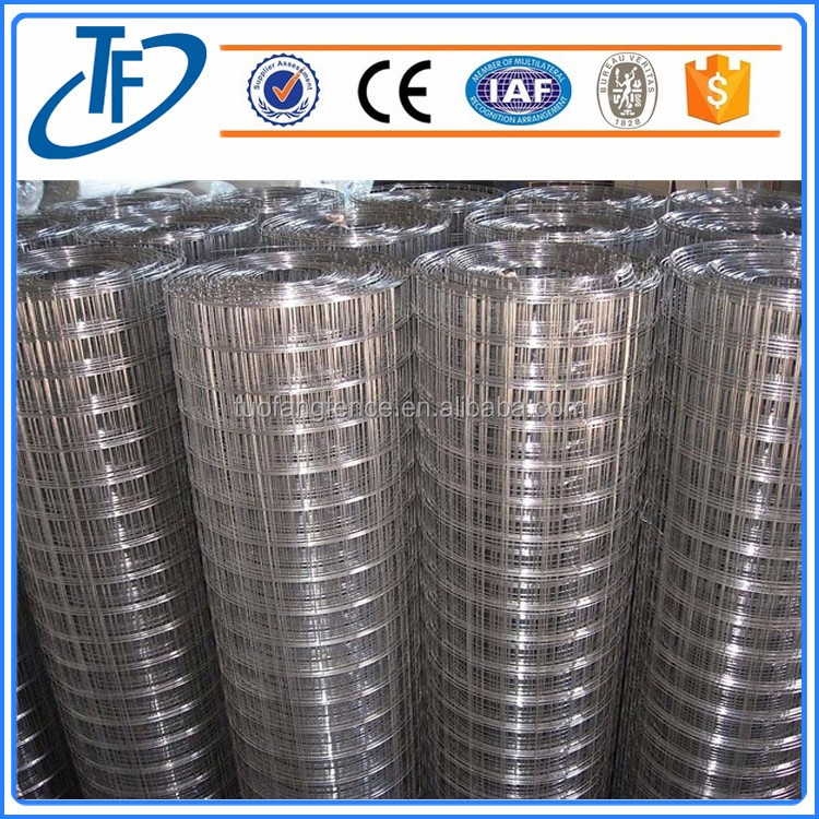 Welded Wire Mesh For Cage