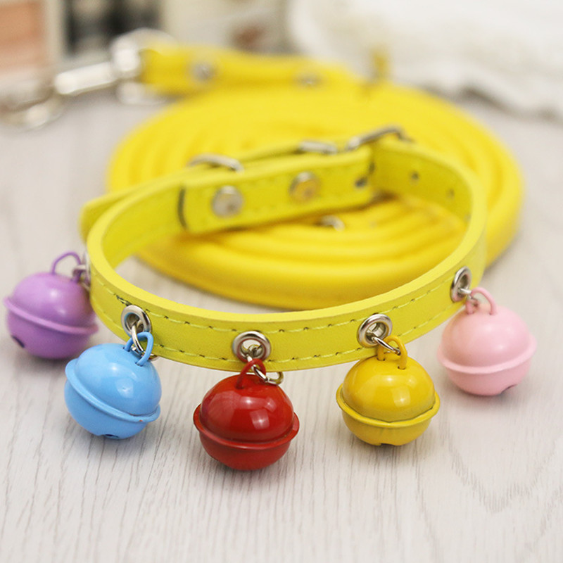New products innovative dog collar nylon