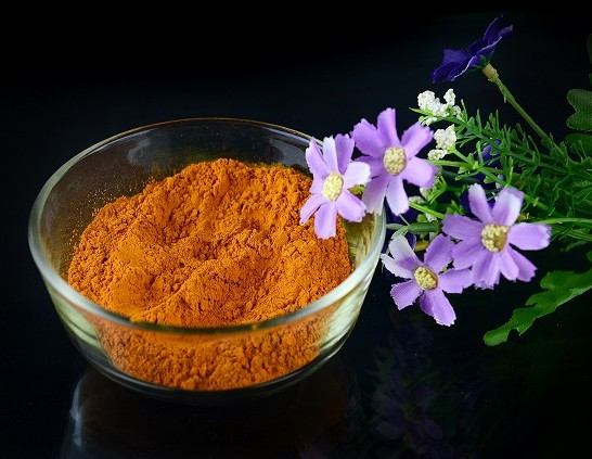 SUPPLIER-Feed Grade Additive type Antibiotic & antibacterial agent Bio-curcumin 10% -95% promote healthy&growth