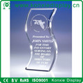 crystal S - Acrylic Award and trophy