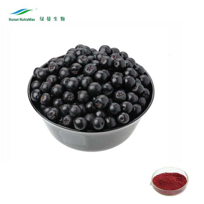 cGMP factory supply Aronia Extract Anthocyanins 25% HPLC