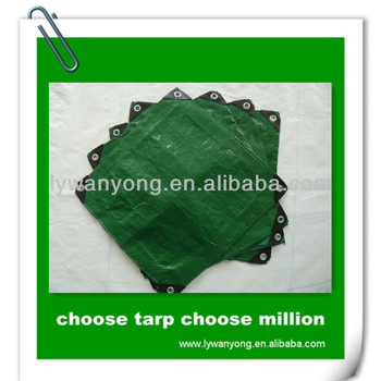 China PE Tarpaulin Factory Price