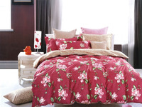 chinese 100% cotton pigment printed Bedding Set