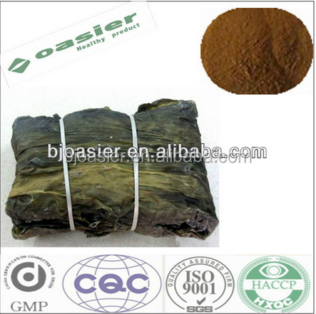 Sale 100% Natural Wakame Kelp Extract / undaria pinnatifida extract powder
