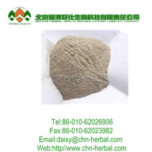 high quality with Sea cucumber extract softgels