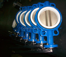 Wafer multi-standard butterfly valve for sea water