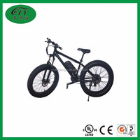 36V 300W Electric mountain bike 20 inch EN15194 / snow electric bicycle