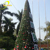 New products from market artificial 4ft trees