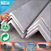 China Supplier galvanized steel profile angle bar specification