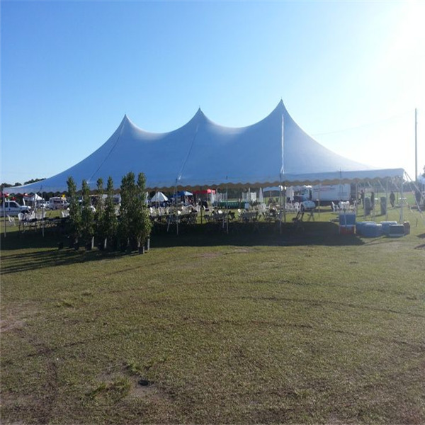 12mx18m Convenient high peak tent for party,tent pole for sale in dongguan