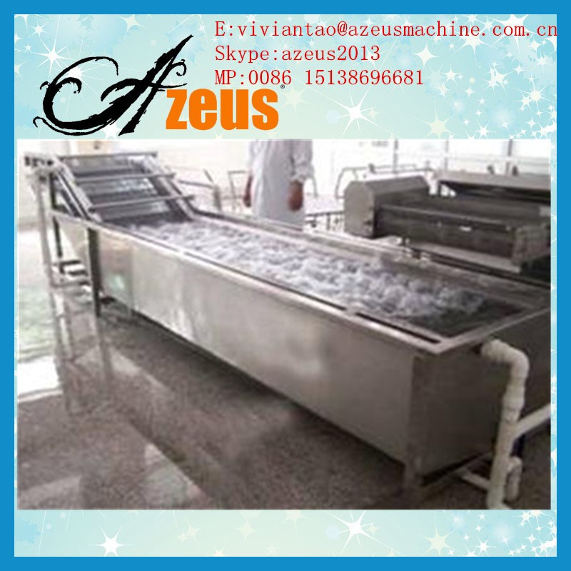 Commerical cheap price ozone fruit and vegetable washer