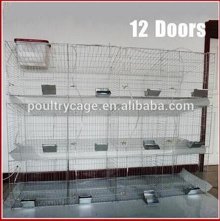 Hot Sale Rabbit Cage For Rabbit Farming In Kenya Farms With Rabbit Feeders And Drinkers