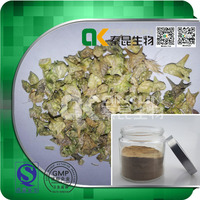 Herbal Extract powder, Tribulus Terrestris Extract with Pale Brown color