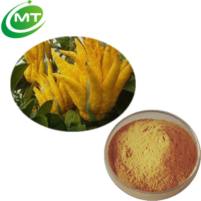 Water soluble organic health food 10:1Citrus medica Extract