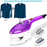 Steam Iron With Boiler Hot Sale In The USA Electric Steam Press Travel Mini Handheld Iron Based Business Garment Steamer