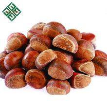 chinese chestnuts wholesale fresh chestnut price per kg