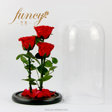 Wholesale Forever Roses 3 Pcs in Glass Dome Preserved Roses Flowers from Kunming City