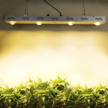 Cxb3590 Hot Sale 3500K Full Spectrum Dimmable Cob Led Grow Lights For Greenhouse Used