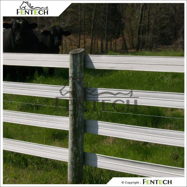200M Per Roll Plastic Fence for Farm, Horse Paddock