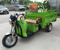 2016 high quality 1000w/1500w High Quality 1kw Electric Tricycle Made cargo tricycle In China