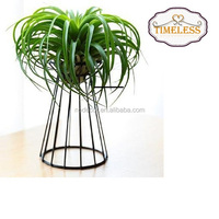 Factory Directly Air Plant Holder Metal Indoor Tabletop Plant Stand