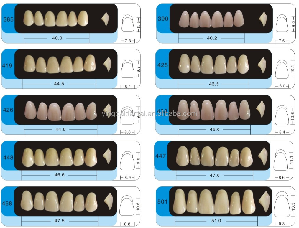 Tow or Three-Layer artificial acrylic teeth