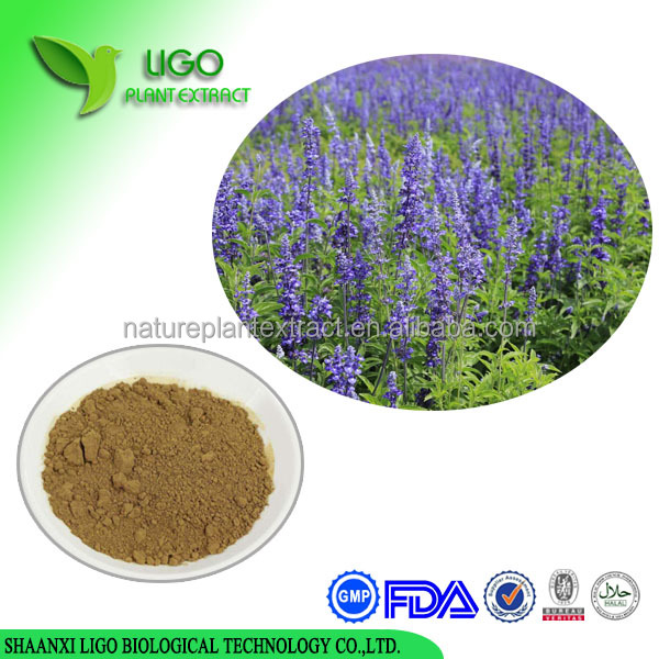 High Quality Pure Nature Salvia officinalis extract Powder Danshen Root Extract