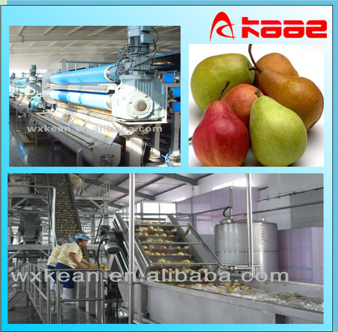 Industrial concentrated pear juice processing machine