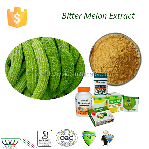 Lower blood glucose free sample for trial 10% total saponin bitter melon extract bitter melon powder