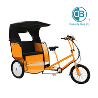 3 wheel passenger's electric tricycle
