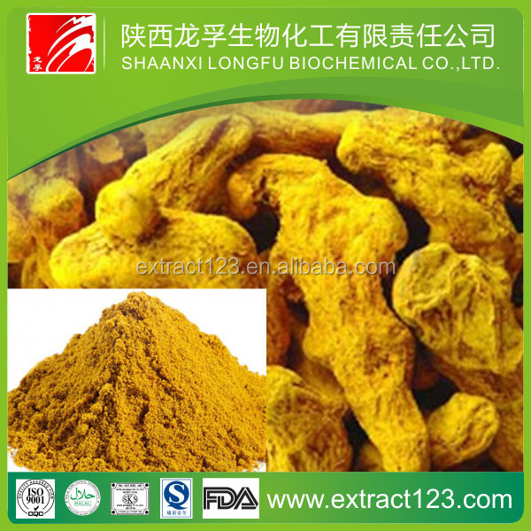 Health food curcumin solvent extraction plants